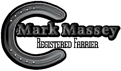 Mark Massy Logo